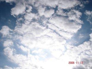 20061117144207.jpg