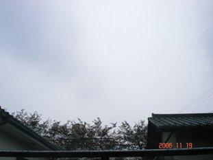 20061119192011.jpg