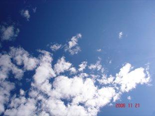 20061121141644.jpg