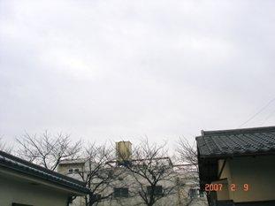 20070209171655.jpg