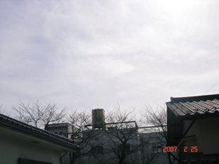 20070225180917.jpg
