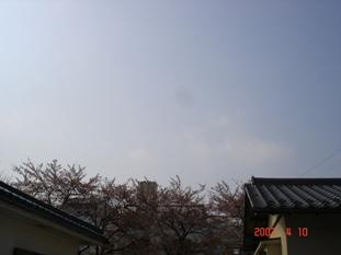 20070410144905.jpg