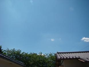 20070520180501.jpg