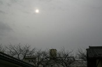 20080107161535.jpg