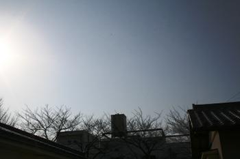 20080110134448.jpg