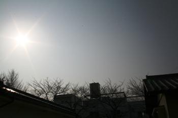 20080111150327.jpg
