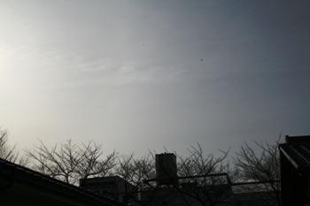 20080128164124.jpg