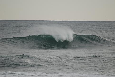 2009-1-13 030