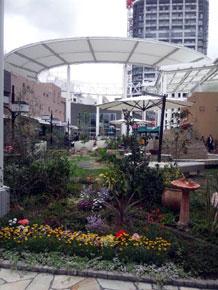 2011-4-20a.jpg
