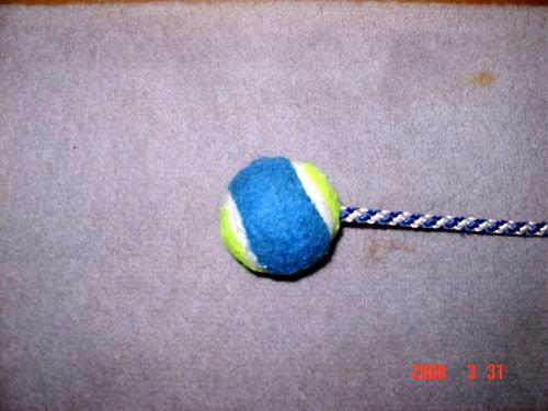 200331・ボール2