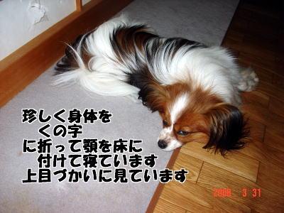 200331・アラン6