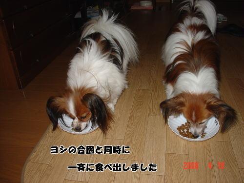 200418・食事2