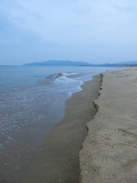 20110329久美浜 044