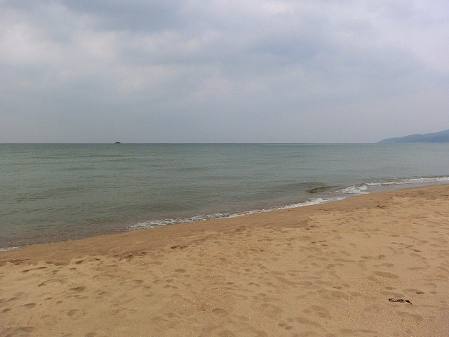 20110329久美浜 043