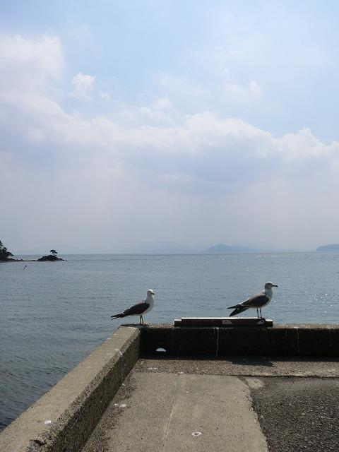 20110329久美浜 023
