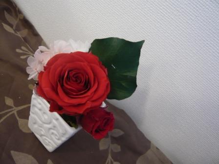i2p_20110215182201.jpg
