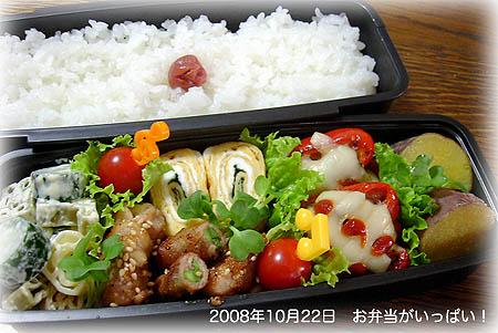 081022お弁当1