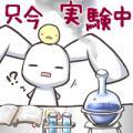 163_2_convert_20090526171058.jpg