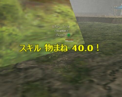4-8-5.jpg