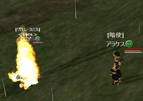t-3.jpg