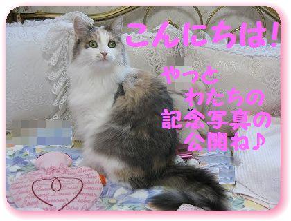 2-IMG_2506ごあいさつ