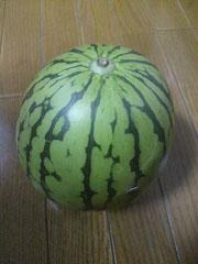 20110727suika.jpg