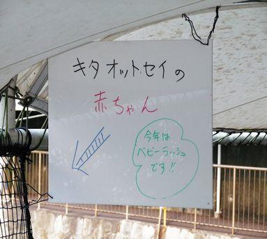 伊豆・三津シーパラダイス4