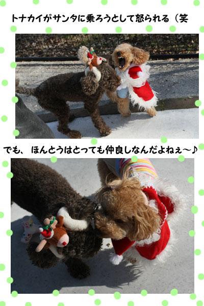 2008-12-20-22.jpg
