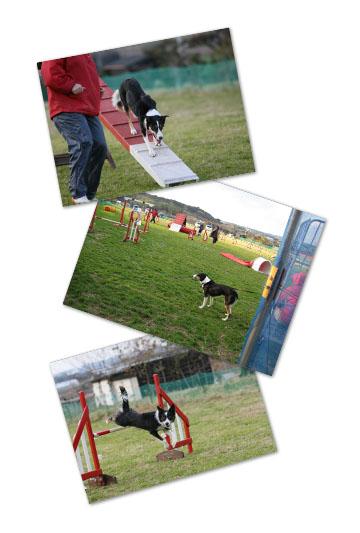 2008-12-28-11.jpg