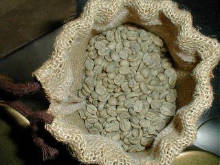 届いたばかりのキリマンジャロ生豆