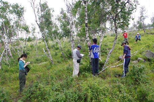 11.8.10 毎木調査