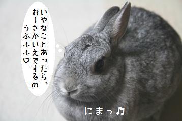 20080729_14.jpg