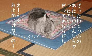 20080807_4.jpg