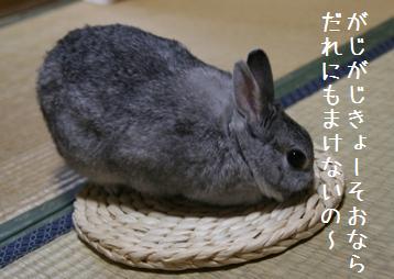 20080810_4.jpg