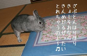 20080810_5.jpg