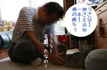 20080815_5.jpg