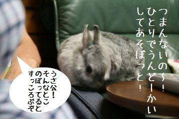 20080817_5.jpg