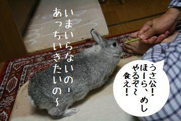 20080820_6.jpg