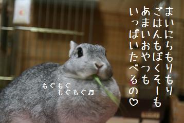 20080831_3.jpg
