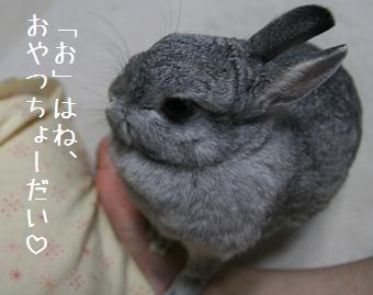 20080902_1.jpg