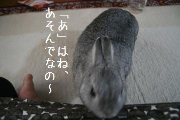20080902_2.jpg