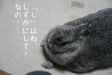 20080902_3.jpg