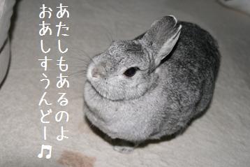 20080902_6.jpg
