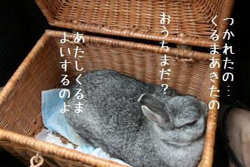 20080906_4.jpg