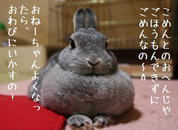 20081011_5.jpg