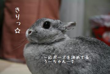 20081014_3.jpg