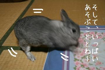 20081019_3.jpg