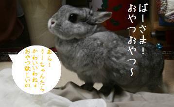 20081021_3.jpg
