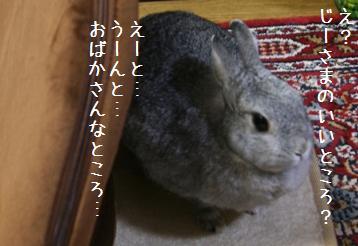 20081024_3.jpg