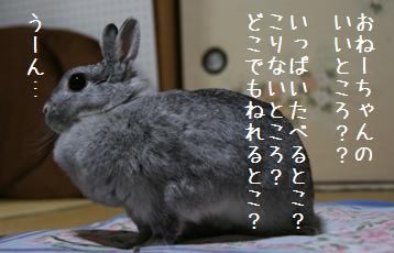 20081024_4.jpg